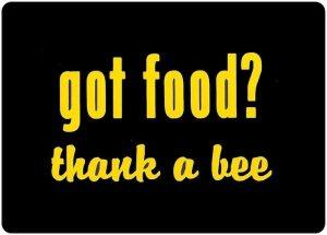 Love food love bees